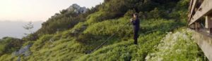 Alphornspieler in den Alpen