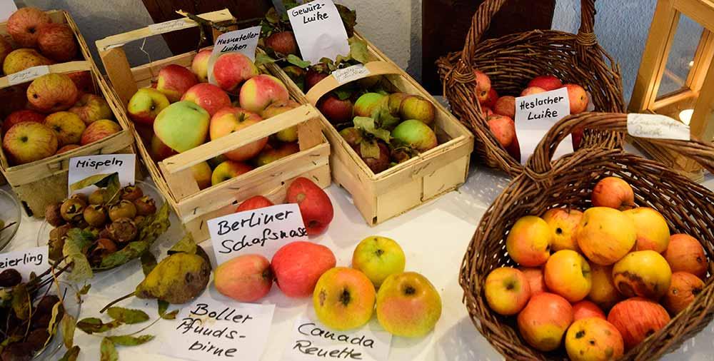Obstkörbe mit verschiedenen Sorten