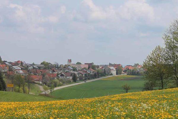 Foto Kreenheinstetten hinter Löwenzahnwiese