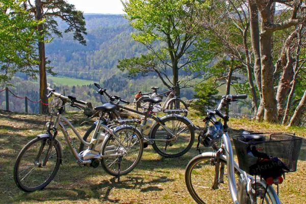 E-Bikes am Donautaltrauf