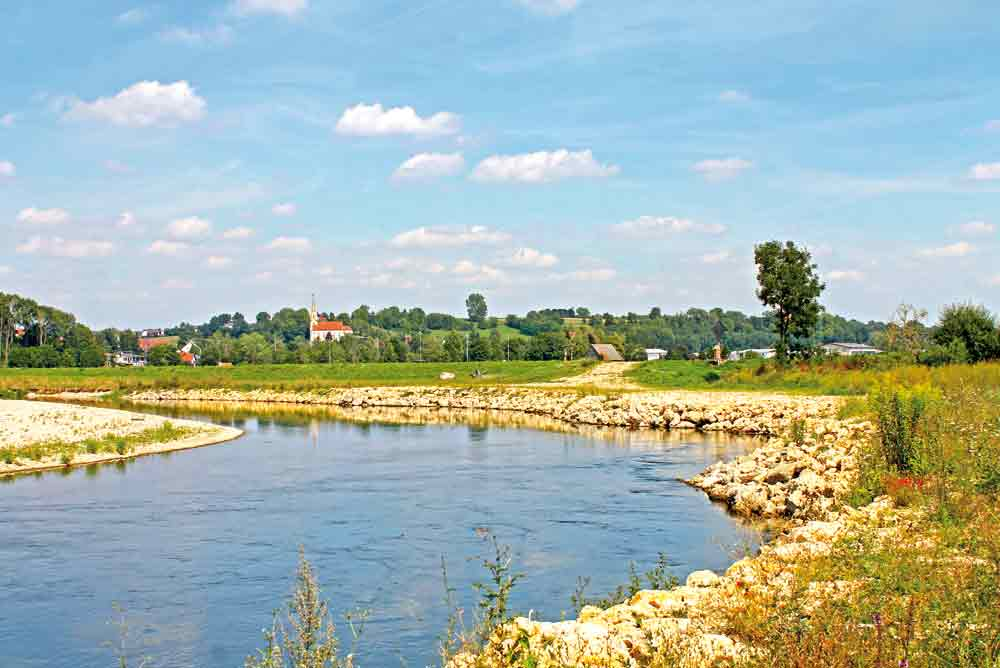 renaturierte Donau