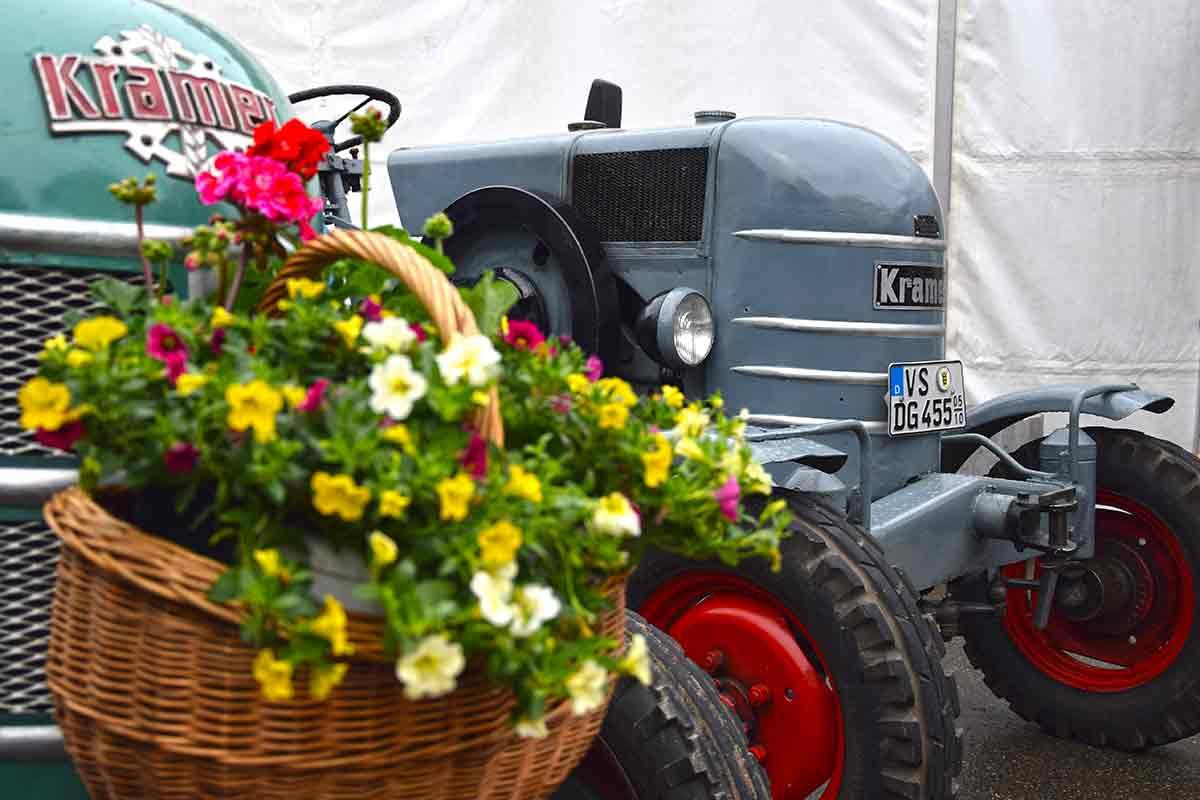 Traktor in Gutmadingen