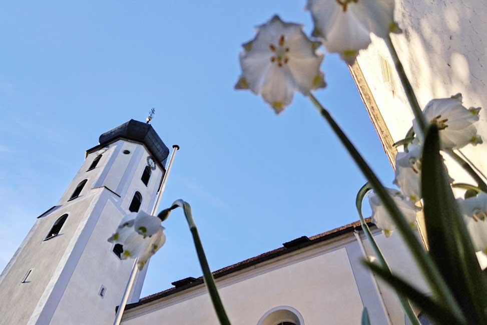 Klosterkirche Inzigkofen mit Märzewnbecher